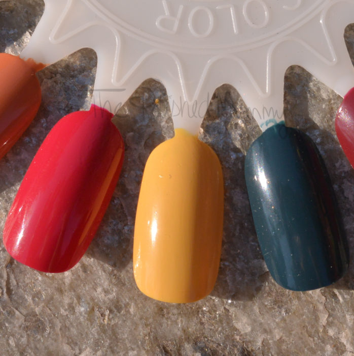 opi-washington-dc-collection-005