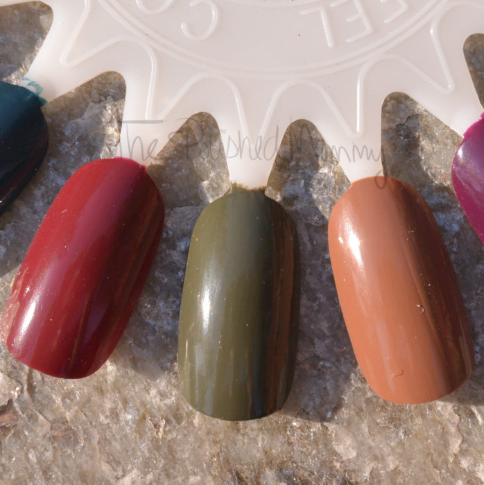 opi-washington-dc-collection-006